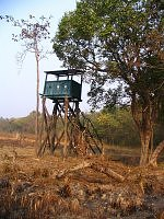 Watch tower at Dudhwa National Park