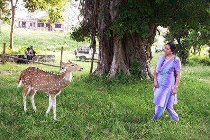 At Bijrani with a nearly pet deer, Jim Corbett National Park