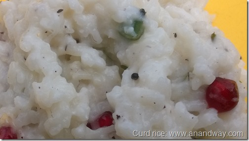 curd rice thai saadam