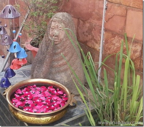 garden aretefacts india prof rs bisht prof vimala bisht (2)