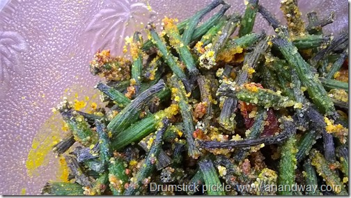 drumstick pickle recipe sehjan achaar vegan ayurvedic