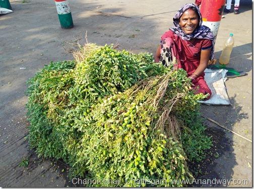 chanori bhaji chattisgarh india traditional food
